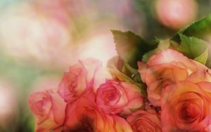 доставки на цветя